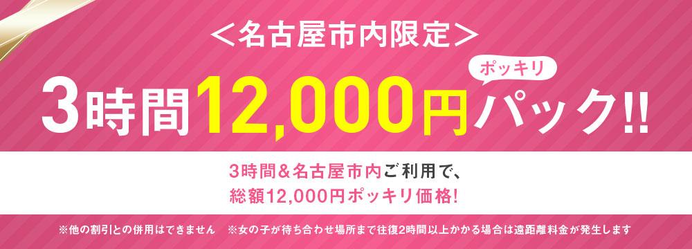 名古屋市限定 3時間12,000円パック!!